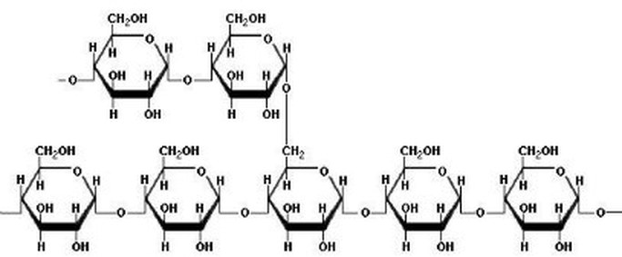 amylase chemical equation